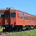 いすみ鉄道 臨時急行1号 (キハ52 125)