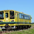 いすみ鉄道 普通列車21D (いすみ202)
