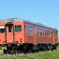 いすみ鉄道 臨時急行4号 (キハ52 125) 後追い