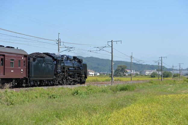 Photos: D51498