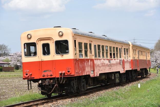 小湊鐵道 普通列車 11A