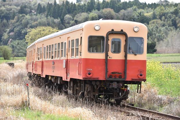 小湊鐵道 普通列車 18A
