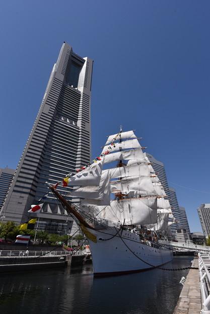 日本丸 (総帆展帆+満船飾) と、ランドマークタワー