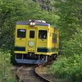 いすみ鉄道 普通列車 51D
