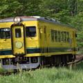 いすみ鉄道 普通列車 52D