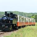 Photos: 小湊鐵道 里山トロッコ1号