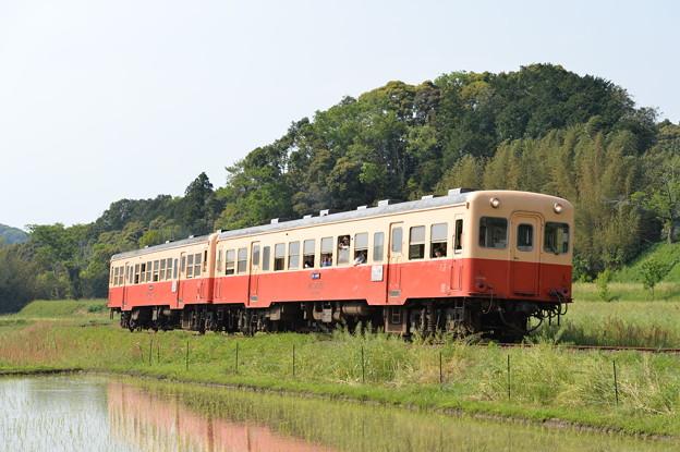 小湊鐵道 臨時普通列車