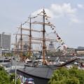 Photos: 日本丸 (満船飾)