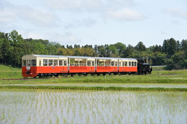 小湊鐵道 里山トロッコ4号