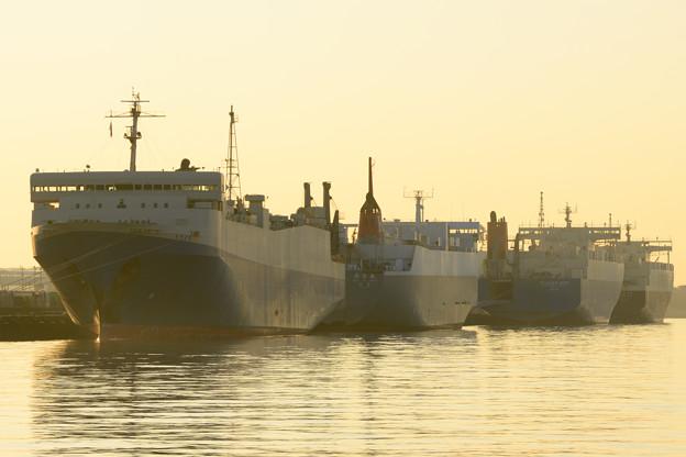 写真: RORO船たちの正月