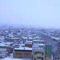 Photos: 雪の朝景色01