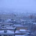 Photos: 雪の朝景色02