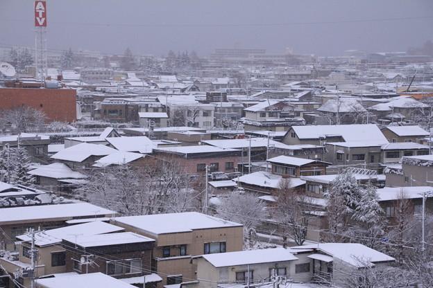 北側の雪景色03
