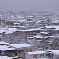 写真: 北側の雪景色03