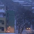 早朝の雪景色03