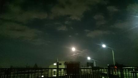 街灯ぢゃないよ、月出た☆(???∀???)?