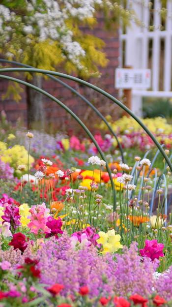 第一庭園前