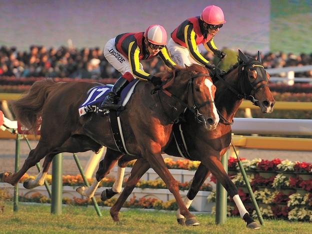 三冠馬 VS 三冠牝馬