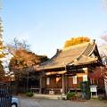 teramachi2_10_02