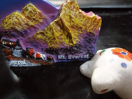 ネパールで買ったマグネットとインドで買った亀