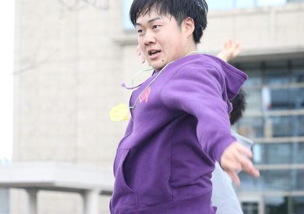 藤井寺 鶴呑旦24
