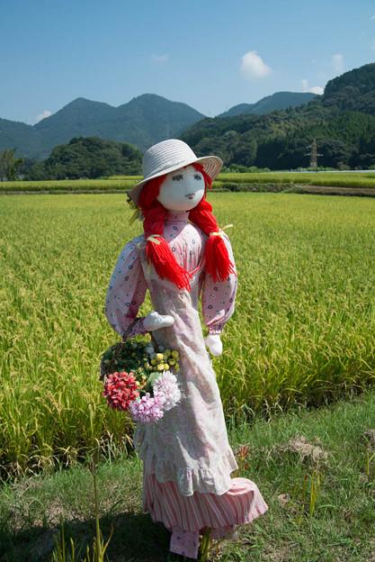田園に映える乙女の案山子