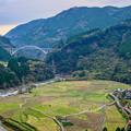 写真: 渓谷に掛かる橋