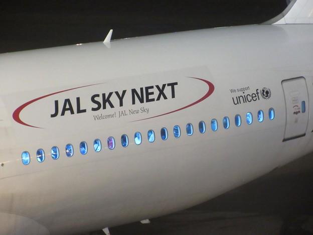 JAL  JA007D  B777-200 JAL SKY NEXT 1
