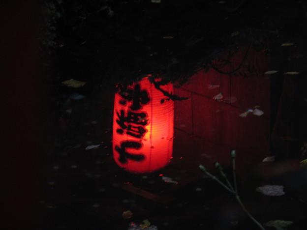 池に浮かぶ提灯の明かり