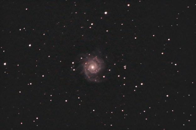 うお座のM74銀河