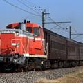 回9330レ DE10 1752+旧型客車 6両