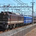 回9745レ EF64 1001+オヤ12-1+旧型客車 6両