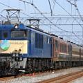 9511レ EF64 1031+12系 7両