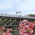 Photos: 臨回8013レ 東武8000系81112F 4両