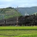 Photos: 102レ C10 8+旧型客車 3両