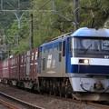 5054レ EF210 129+コキ