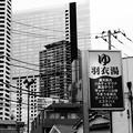 Photos: 街並 (渋谷区本町)