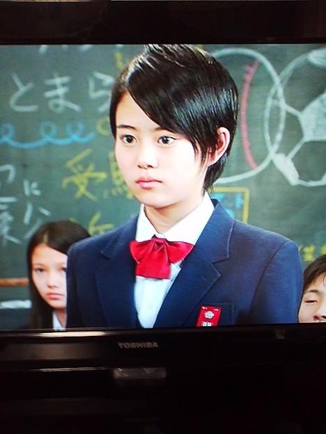 金八先生第8シリーズに高畑充希さん、でてたんやな。