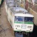 Photos: _MG_0845 成田臨 185系B2編成(ストライプ)