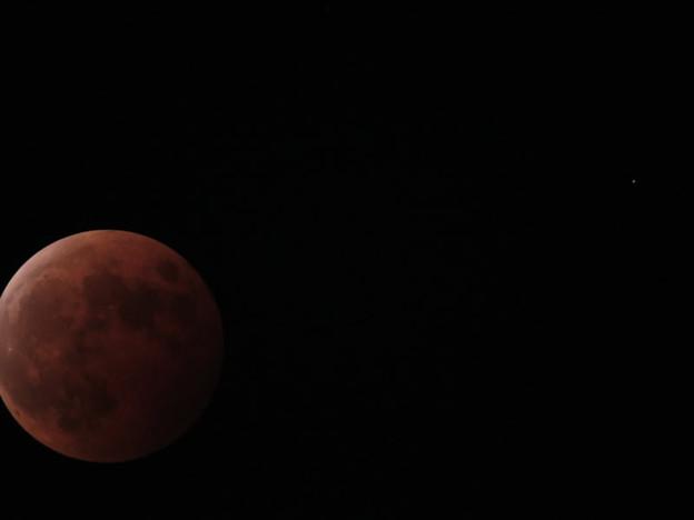 Photos: 月と天王星(皆既月食)