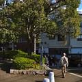 京橋 左岸緑地 京橋東詰 広島市南区京橋町