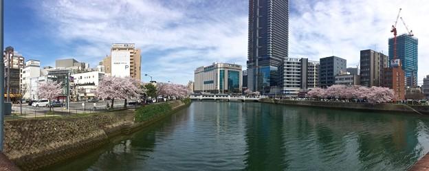 荒神橋から猿猴橋の方向 広島市南区的場町 - 猿猴橋町 2016年4月5日