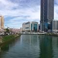 Photos: 荒神橋から猿猴橋の方向 広島市南区的場町 - 猿猴橋町 2016年4月5日