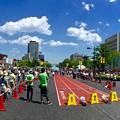 ひろしまストリート陸上 Hiroshima street track and field ひろしまフラワーフェスティバル 2016年5月4日 広島市中区中島町 平和大通り 平和公園前