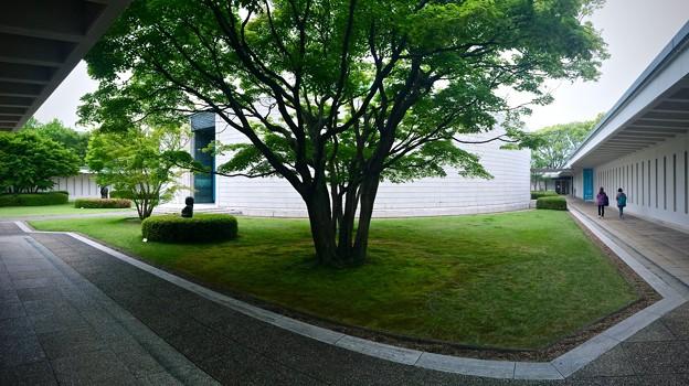 ひろしま美術館 中庭 広島市中区基町