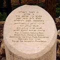 Photos: エルサレムのオルソンハイド公園