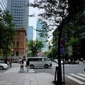 ビルの間から復元東京駅