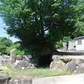 Photos: 服部川7号墳から上二つ目の古墳