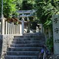 Photos: 垣内子守社 (2)