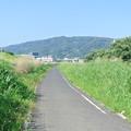 Photos: 石川自転車道